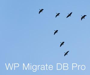 wp-migrate-db-pro-300x250
